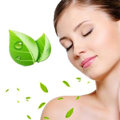 Top 3 cách trị nám da bằng thảo dược hiệu quả ngay tại nhà